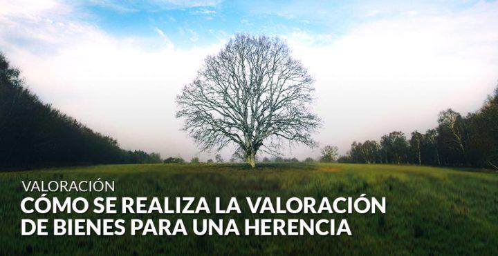 Cómo se realiza la valoración de bienes para una herencia