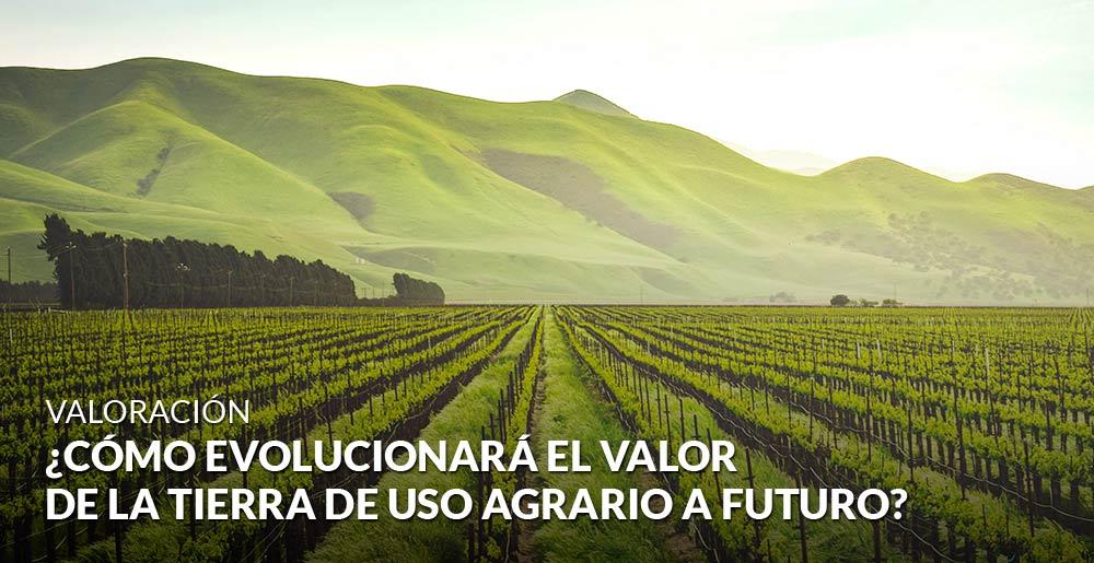 ¿Cómo evolucionará el valor de la tierra de uso agrario a futuro?